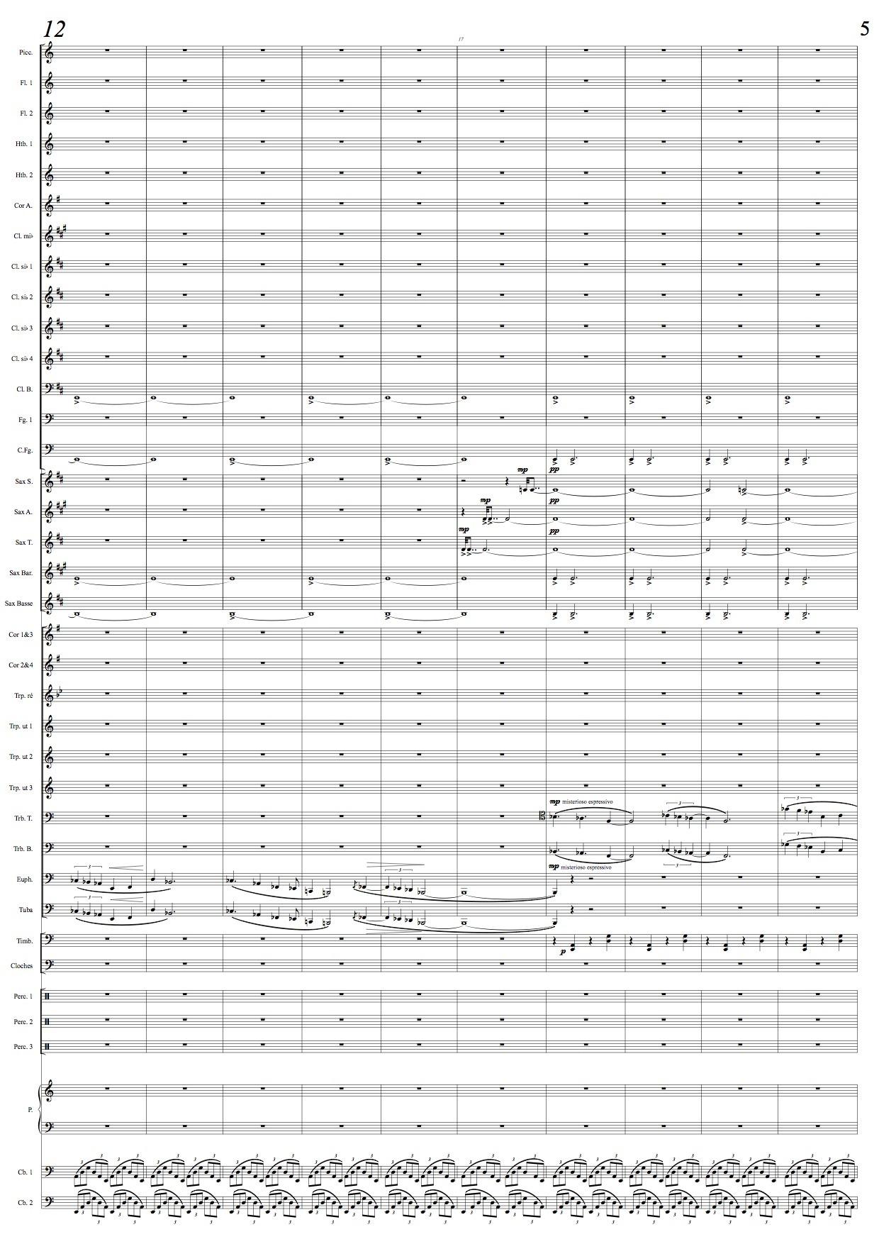 Thierryhuillet Concerto3